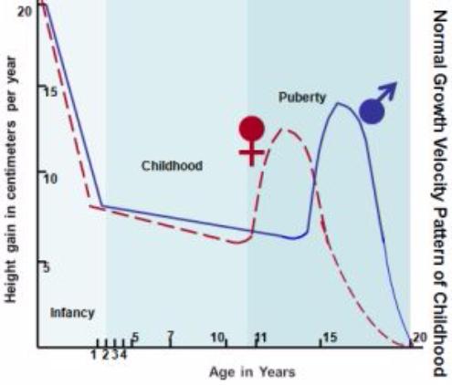 growth-velocity-curve.jpg